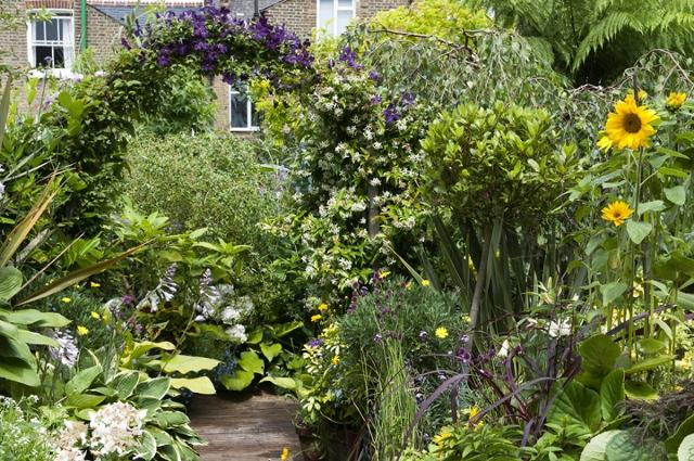 My garden | Wayne\'s Garden Blog